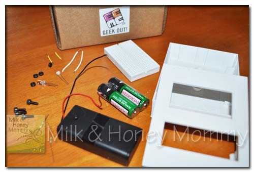 EEME Electronic Project for Kids | Hip Homeschool Moms