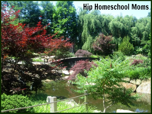 HHM Creation Museum Landscape Pic
