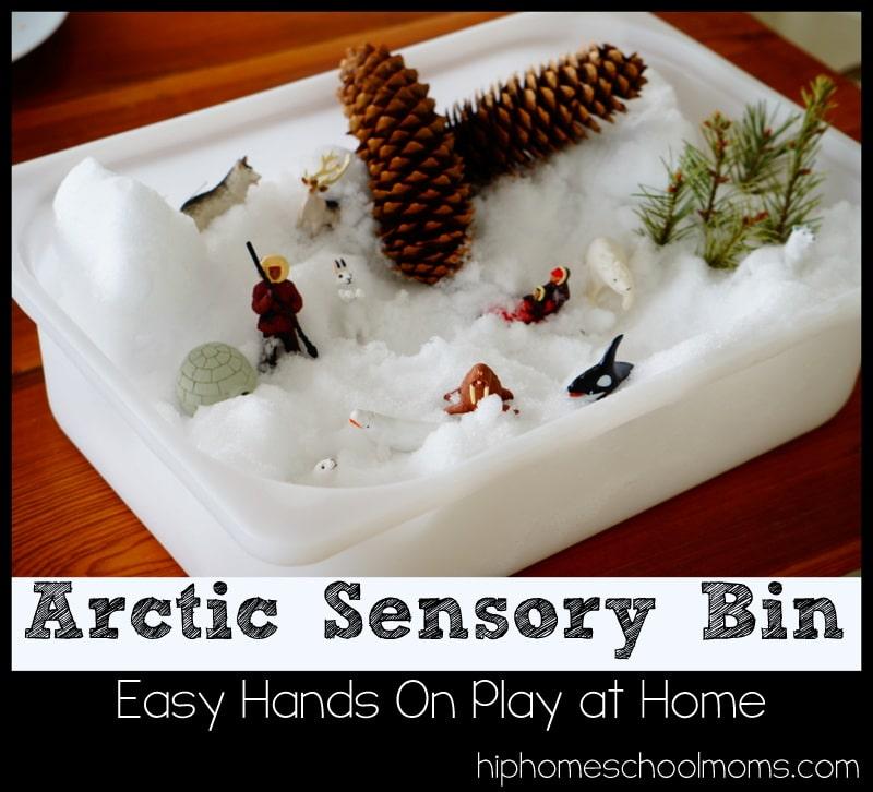 Arctic Sensory Bin from Hip Homeschool Moms