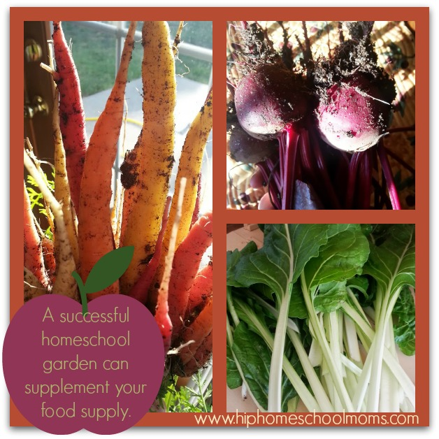 A successful homeschool garden not only enhances your learning but can supplement your food supply and reduce grocery expenses no to mention adding healthy organically grown food to your table. | Hip Homeschool Moms