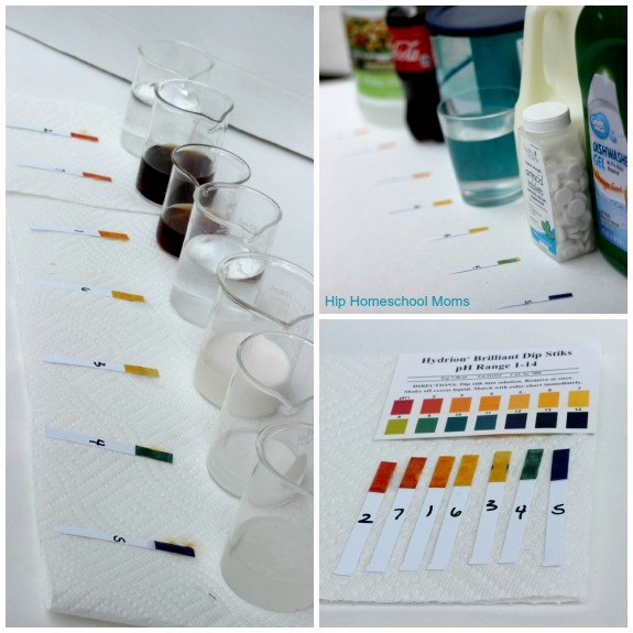 acid-base-experiment-household-items-in-order