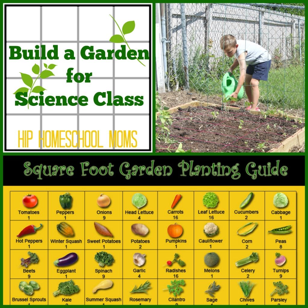 Build a Garden for Science Class from Hip Homeschool Moms