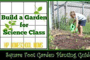 Build a Garden for Science Class from Hip Homeschool Moms
