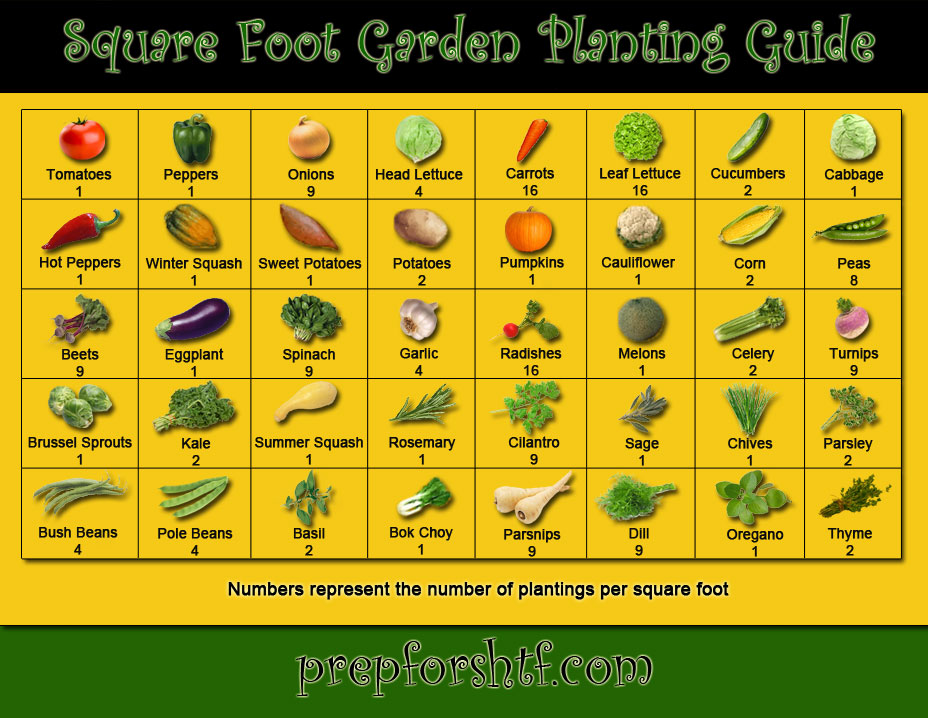 Sqaure Foot Planting Guide