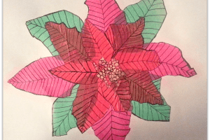 "Tissue Paer ""Painted"" Poinsettia 