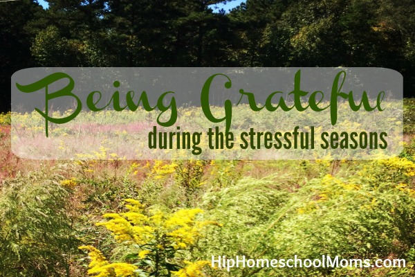 being grateful during the stressful seasons