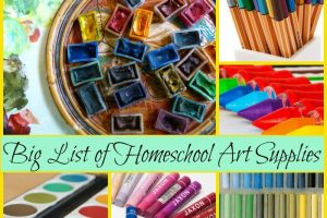 If you're looking for help in choosing supplies, look no further. Check out this big list of homeschool art supplies.