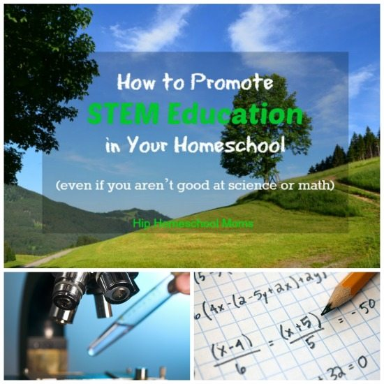 Stem Schools Uk: How To Promote STEM Education In Your Homeschool