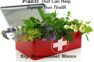 HHM Plants That Help Health