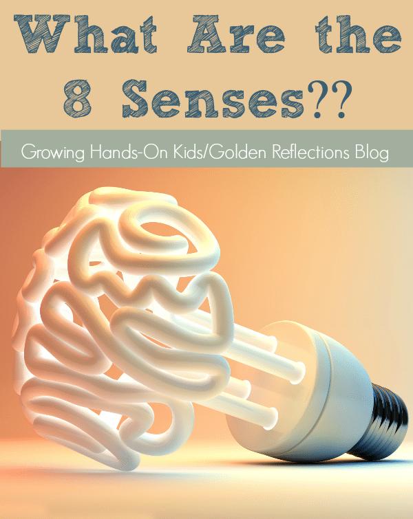 8 senses