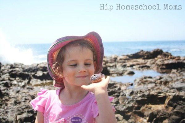 HHM Homeschooling While Traveling 3