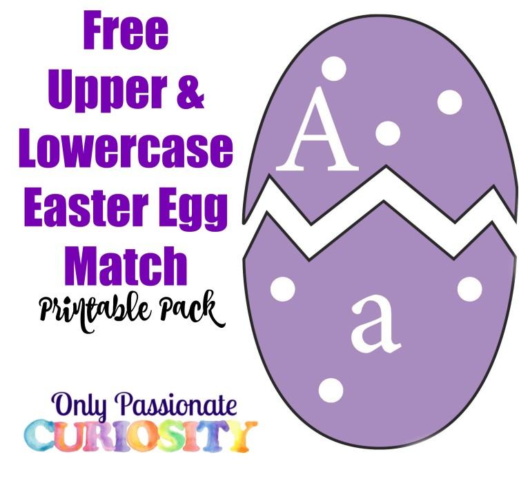 ABC Eggs 768x697 1