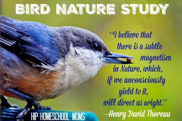 Bird Nature Study from Hip Homeschool Moms