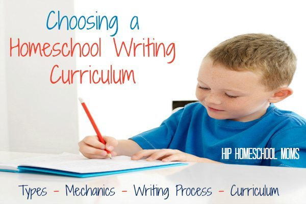 essay about school curriculum Course description: this course focuses on one's understanding of the english and american literature from old to contemporary it assists one in honing skills and creativity through the different performance tasks- short story writing, drama presentation, poetry slam, and persuasive essay writing as well as enhancing their fundamental.