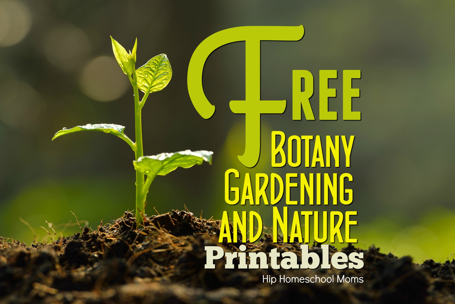 Botany, Gardening, and Nature Printables | Hip Homeschool Moms