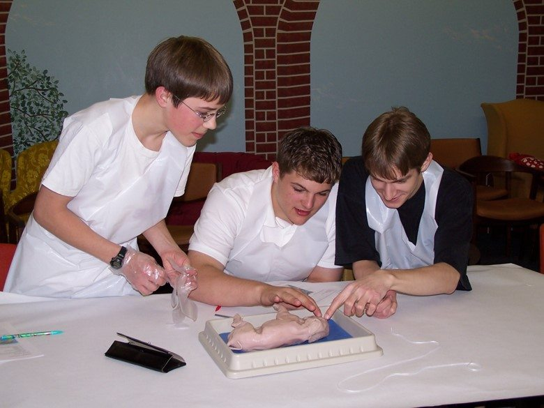 co-op-bio-dissection
