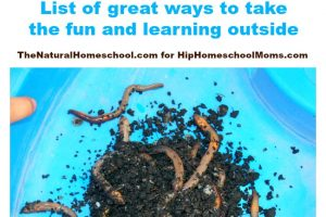 Nature Ideas for Kids