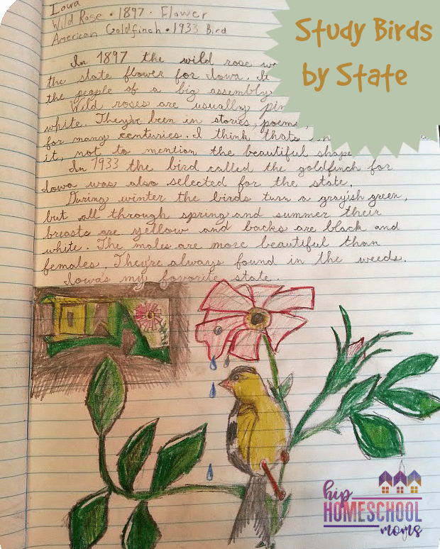 State Bird Notebook Page