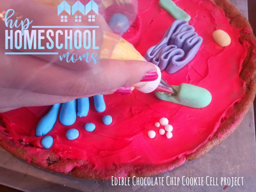 Edible Cell Project Chocolate Chip Cookie Science Hip Homeschool Moms 3d Plant Diagram Using Once All The Parts Of Are Made Add Them To Complete Membrane Roll Out A Strip Fondant Put Around Edge