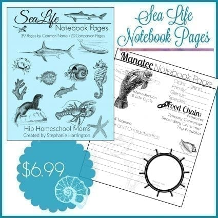 Sea Life Notebook Pages