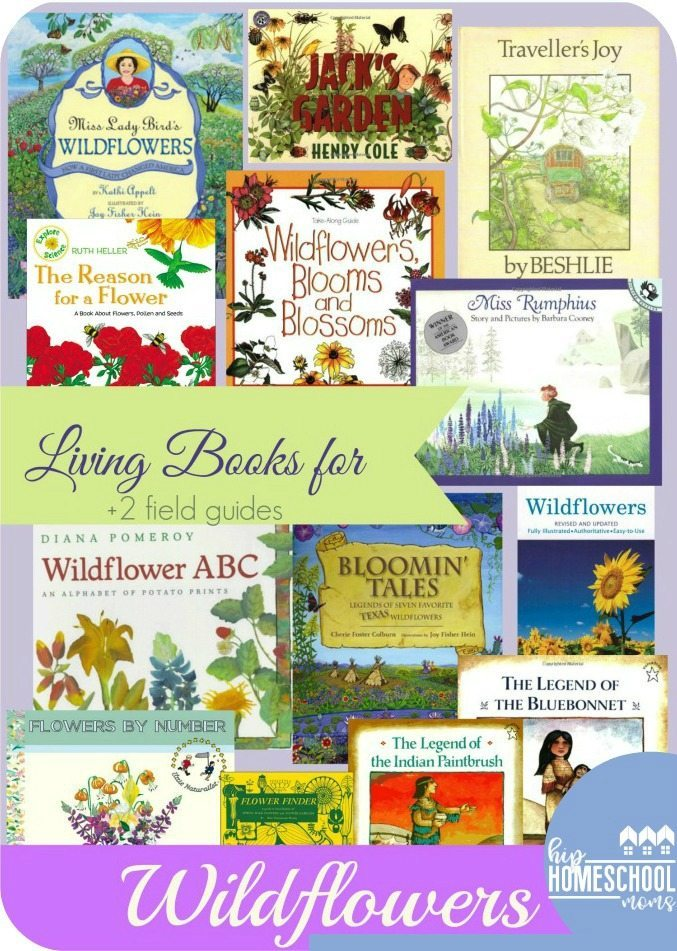 Wildflower Books for Wildflower Study