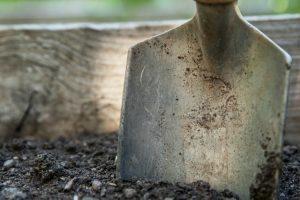 Spring Planting List