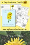 Free Wildflower Notebook Pages