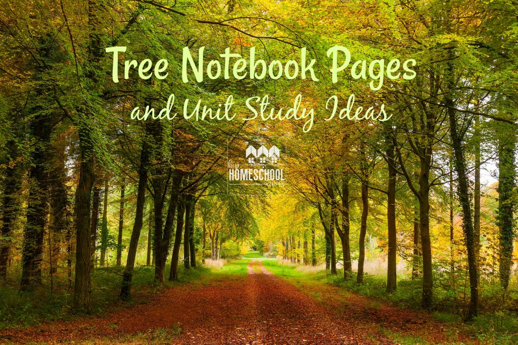 Want some notebook pages and unit study ideas about trees? You'll love these!