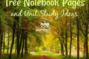 Tree notebooking pages and unit study ideas!