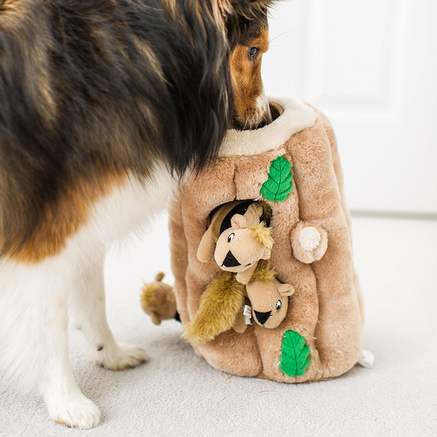 Hide And Seek Squirrel Dog Toy