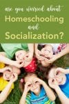 blog Are You Worried About Homeschooling Socialization PIN2
