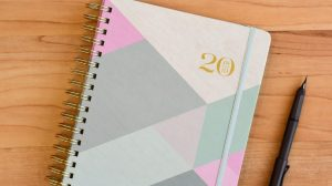 cover of inkWELL Press planner