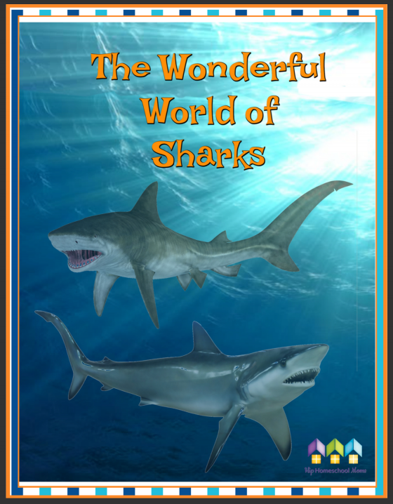 Sharks Workbook Free During Shark Week