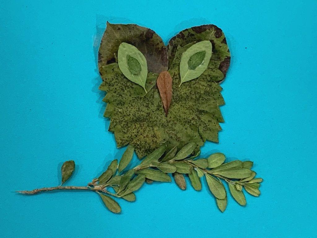leaf creatures tutorial