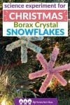 You'll need a bit of patience, but this science experiment will wow your kids to see Borax make crystals out of pipe cleaner ornaments!