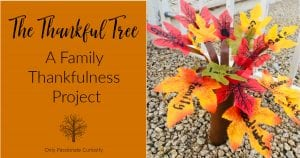 The Thankful Tree wide