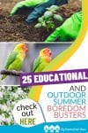 If you're looking for Educational and Outdoor Summer Boredom Busters for kids of all ages, you'll find lots of great ideas here!