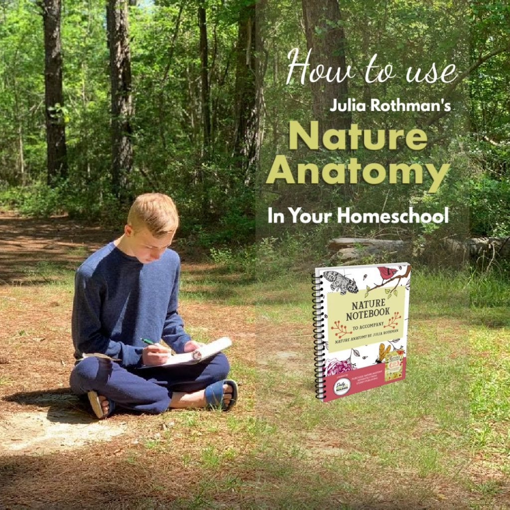 How to use Julia Rothmans Nature Anatomy in your homeschool ig